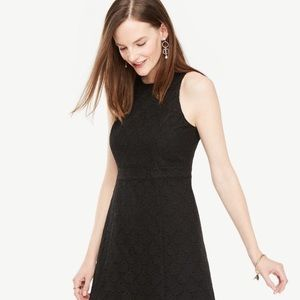 Ann Taylor LOFT M 10 Black Eyelet A Line Dress